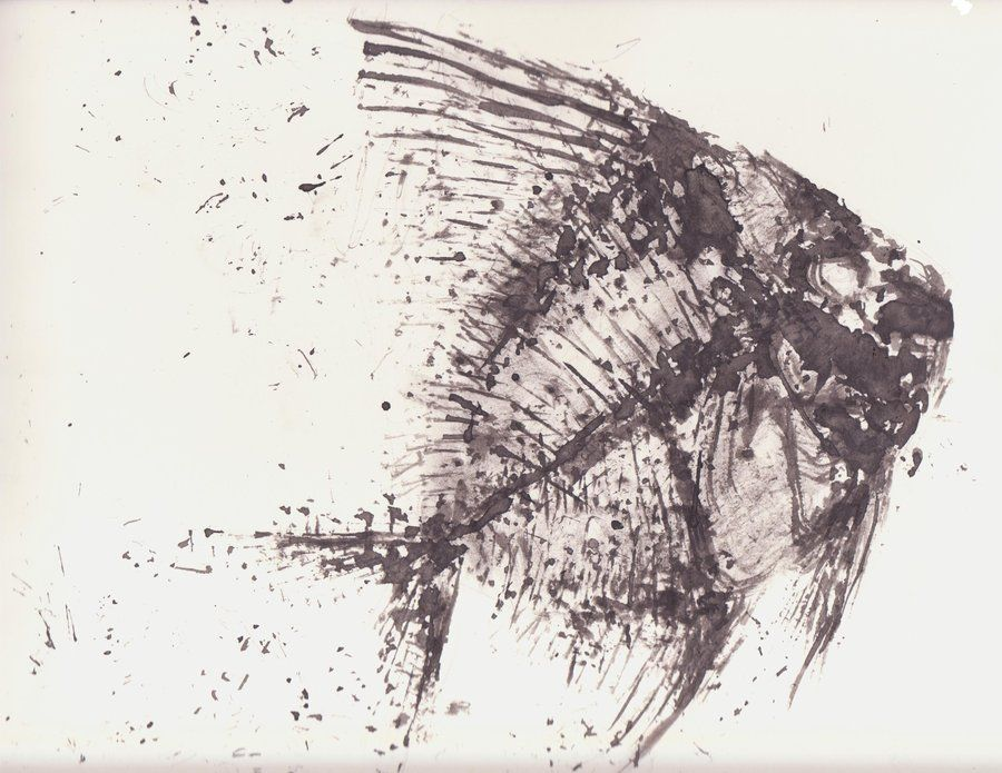900x695 Fish Fossil Drawing Fossil Fish By Jamiam100 Art To Inspire