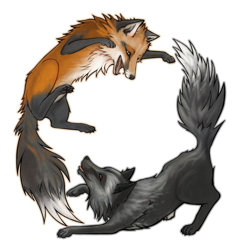 904x960 Fox And Wolf Art Tattoos Foxes, Wolf And Tattoo