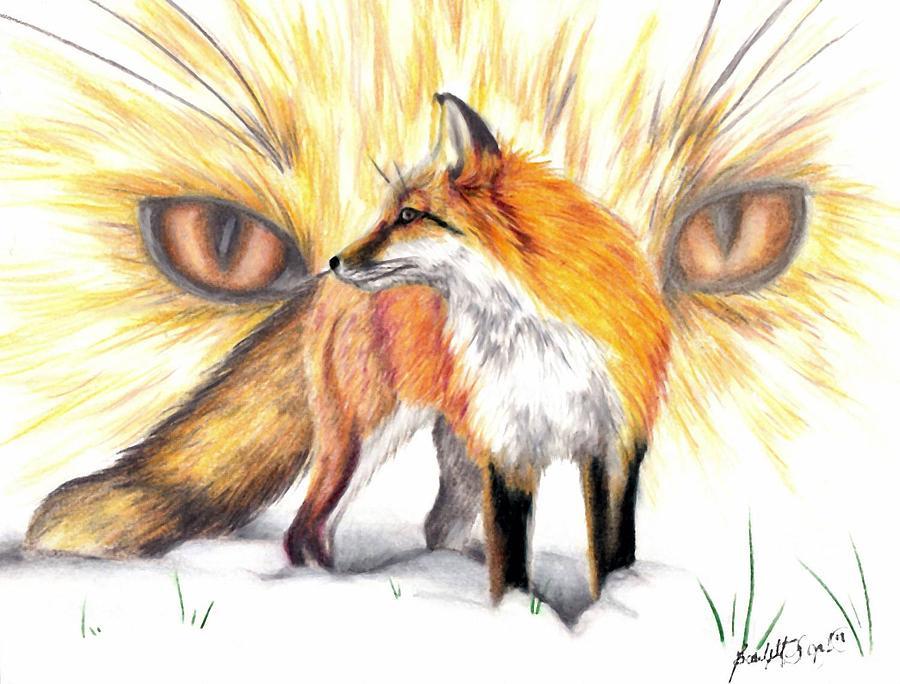 900x684 Red Fox Drawing By Scarlett Royal