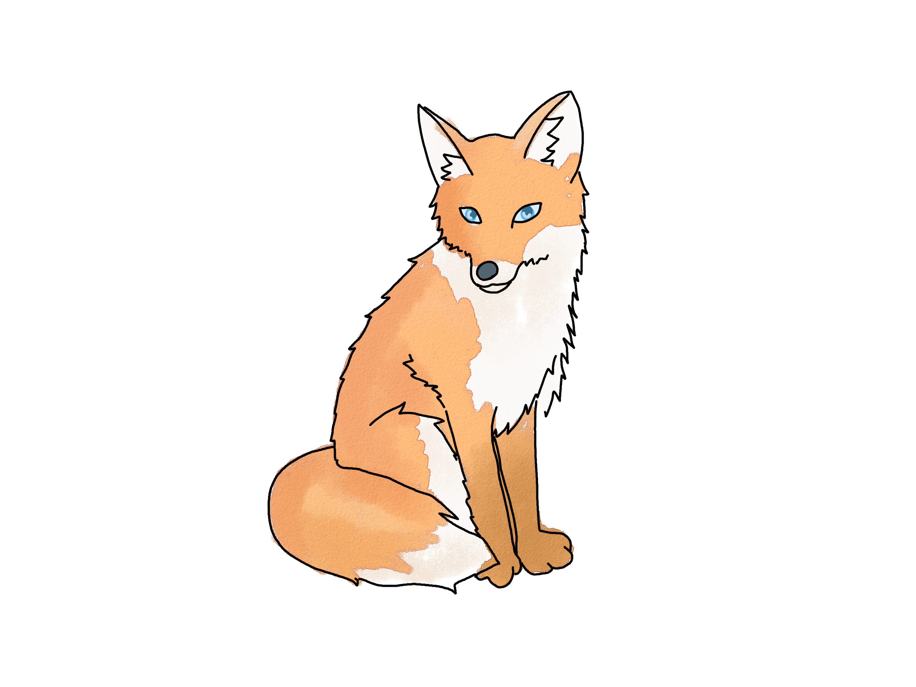 simple fox drawing selo l ink co