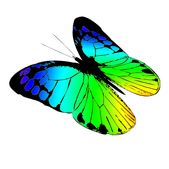 free butterfly drawing at getdrawings com free for personal use rh getdrawings com free butterfly clipart download free butterfly clipart with transparent background
