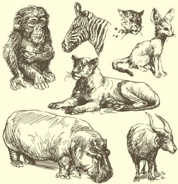 356x368 Line Wild Animal Drawings Free Vector Download (101,658 Free