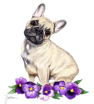 300x331 French Bulldog Art Applied Still A Dreamer