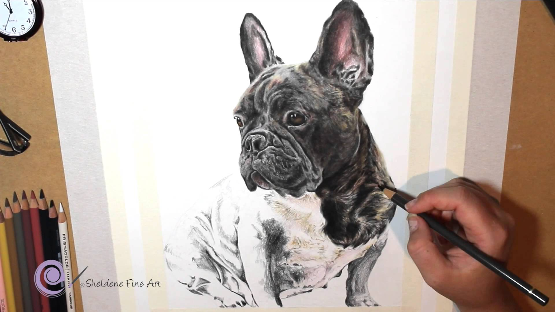 1920x1080 Realistic Colored Pencil Drawing Of A French Bulldog