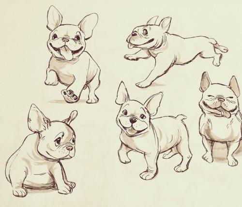 500x428 French Bulldog Drawing Tumblr