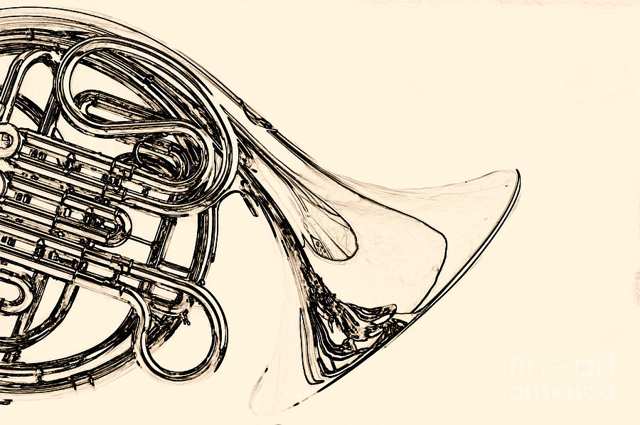 900x597 Drawing Of A French Horn Classic In Black And White 3429.03