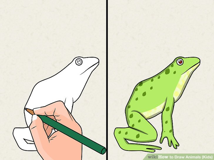 728x546 How To Draw Animals (Kids) 10 Steps (With Pictures)