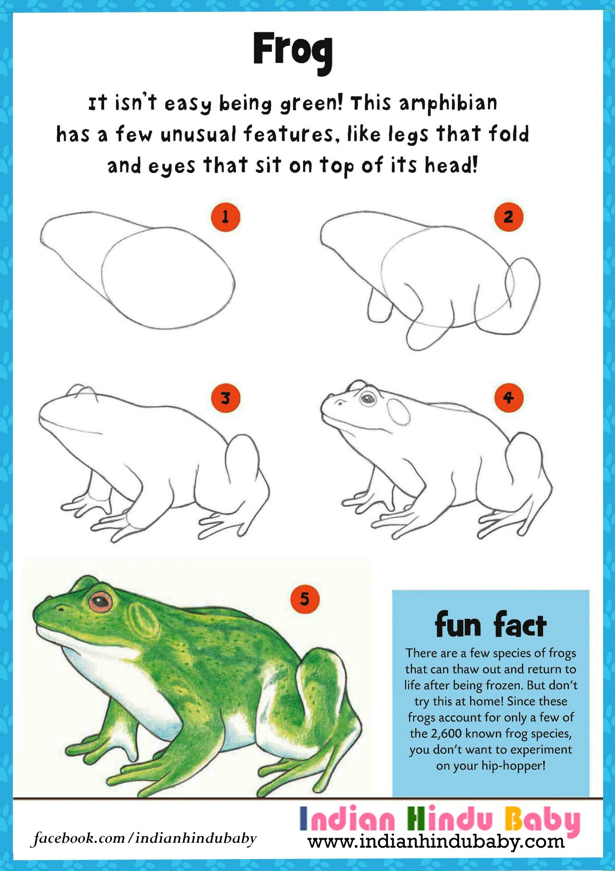 1240x1754 Know Some Of The Fact And Teach Your Kid To Draw And Paint Frog