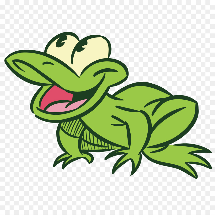 900x900 Frog Drawing Photography Illustration