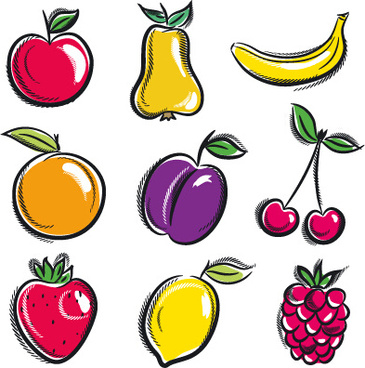 365x368 Vector Fruits Vegetables Drawing Free Vector Download (91,654 Free