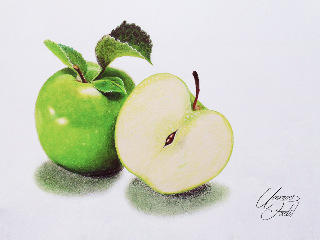 1032x774 Colour Pencil Shading Fruits Drawing Fruits 2