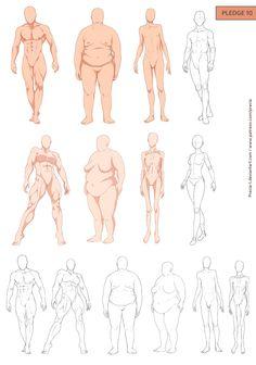 236x336 How To Draw Realistic Bodies Body Type Study  By ~jinx Star