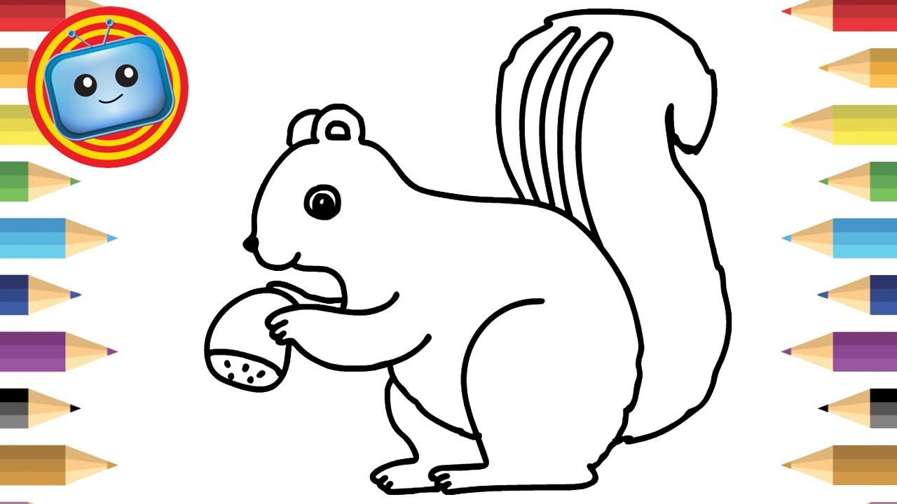 1280x720 Cute Squirrel Drawing How To Draw Cute Squirrel Colouring Book