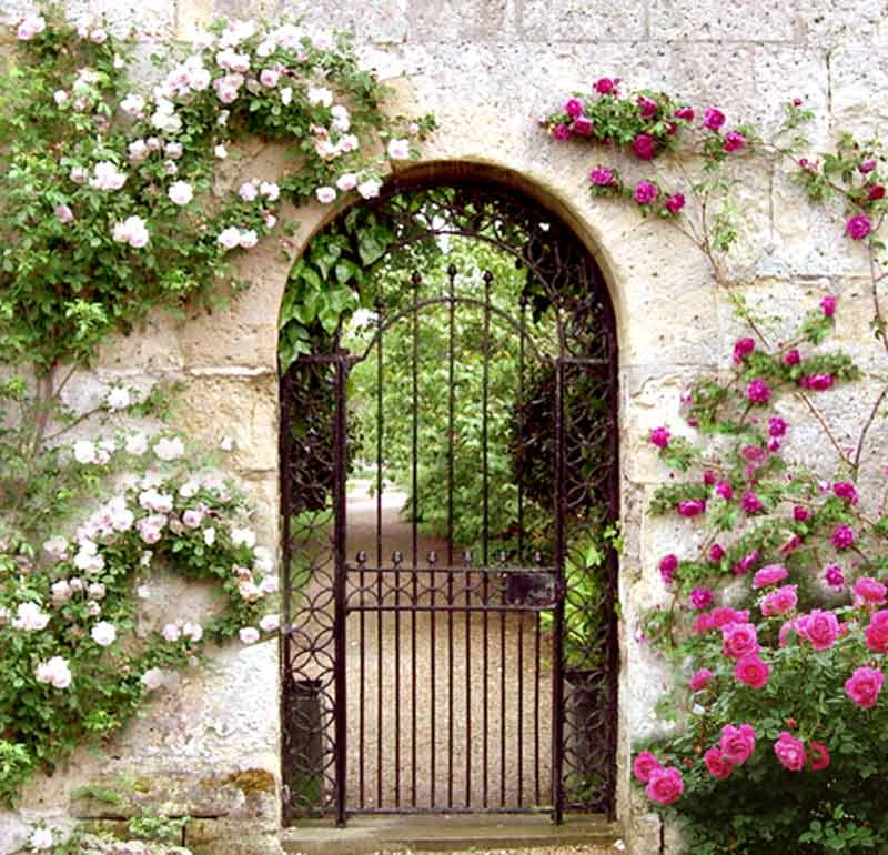 800x770 Garden Gate Pics