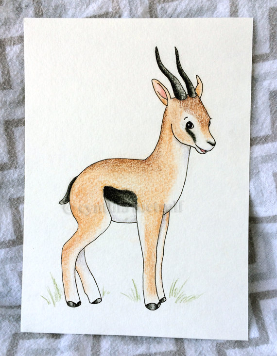 570x734 Items Similar To Gazelle Nursery Original Drawing Art, Safari