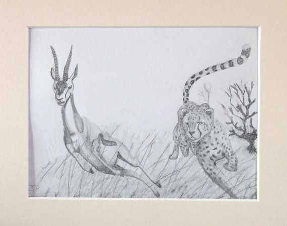 570x450 Items Similar To Wildlife Drawing, Cheetah Chasing A Gazelle