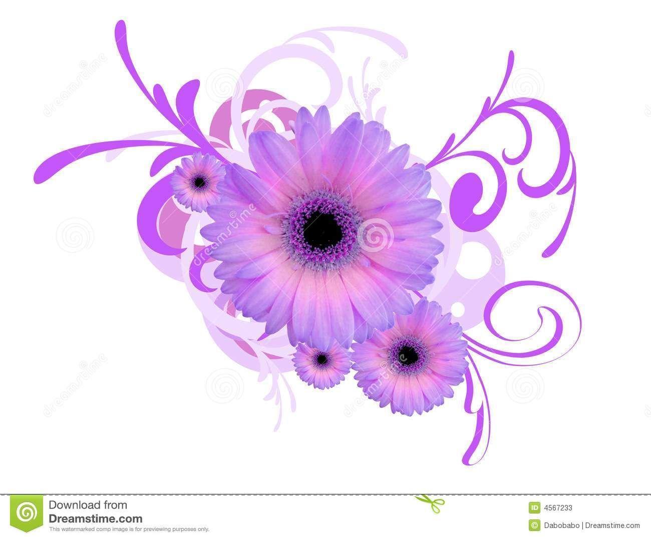 1300x1077 Daisy Drawings Purple Gerbera Daisy Clip Art Gerbera Daisy