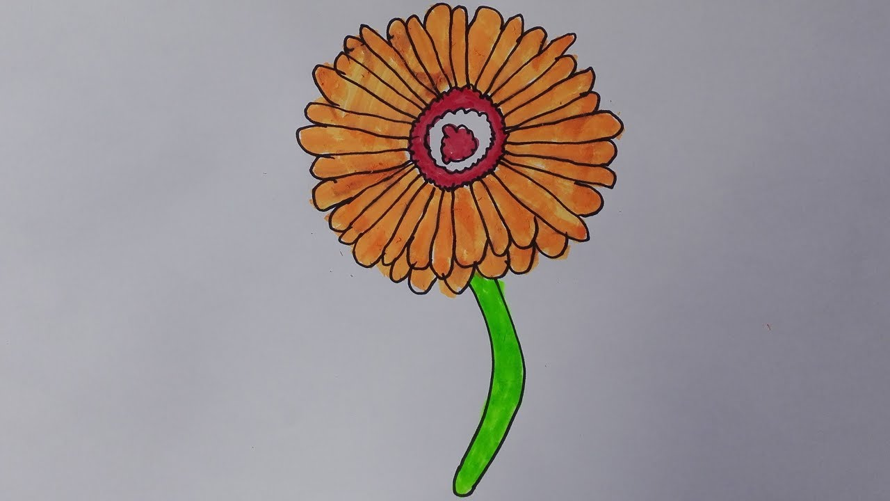 Daisy Flower Line Drawing : Gerbera daisy drawing at getdrawings free for personal use