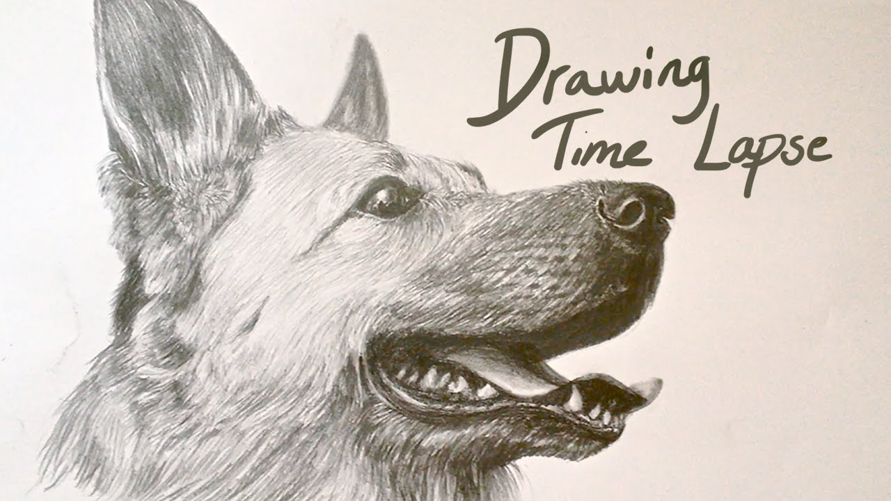 1280x720 Drawing Time Lapse