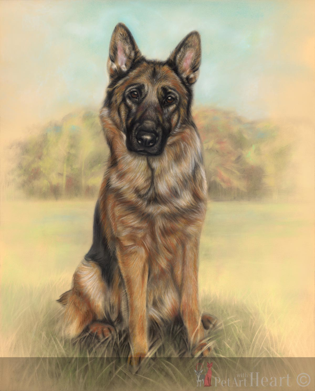1200x1493 Pastel Drawing Of German Shepherd Izzy