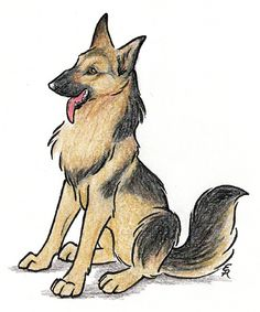 236x283 German Shepard Sketches By On @