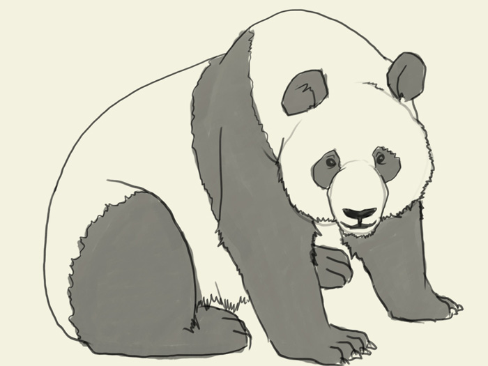 700x525 How To Draw Panda