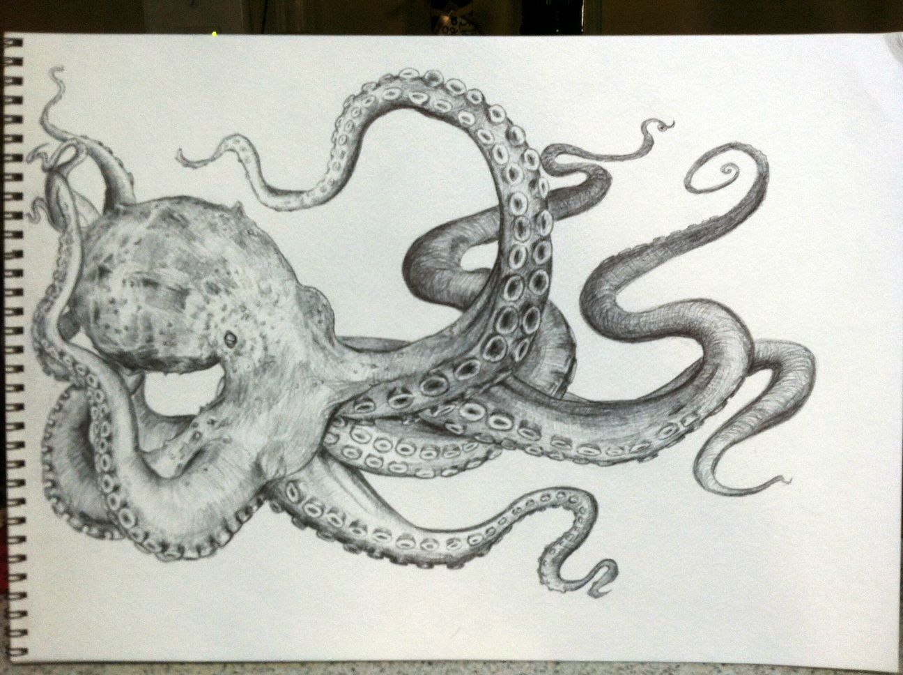 Giant Octopus Drawing at GetDrawings.com | Free for ...