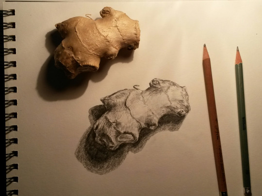 540x404 Drawing A Vegetable By Laura 64 Million Artists