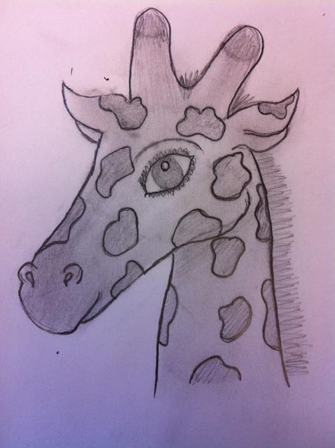 478x640 How To Draw A Giraffe