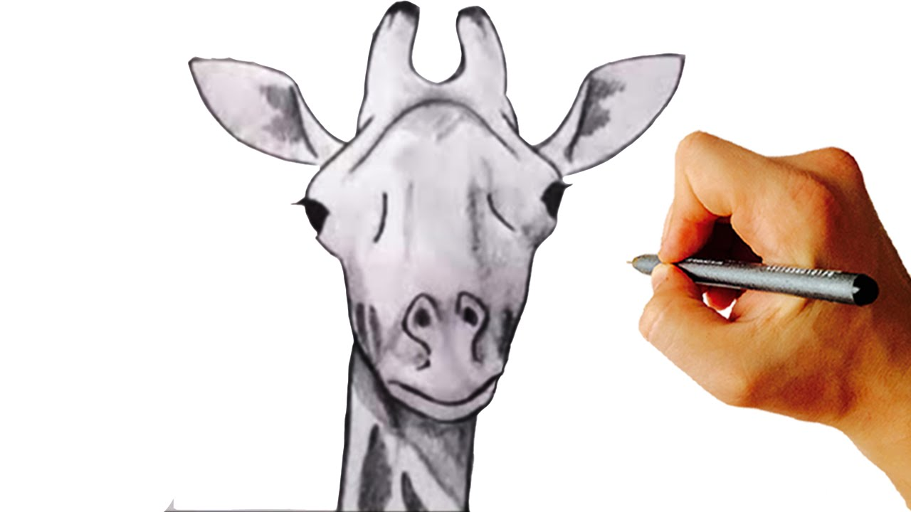 1280x720 How To Draw A Giraffe Very Simple Step By Step Drawing For Kids