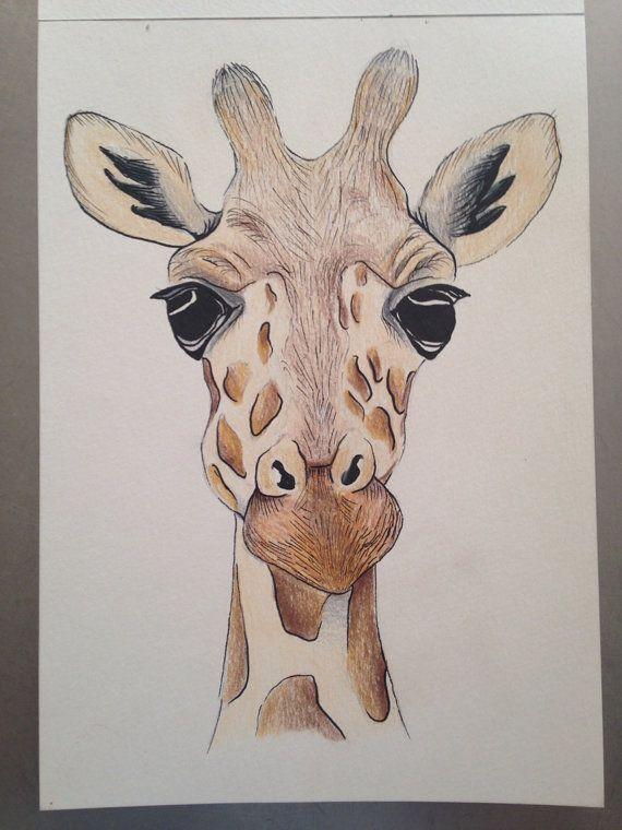 570x760 A5 Giraffe Face Drawing Using Pencil And Ink. Original Piece