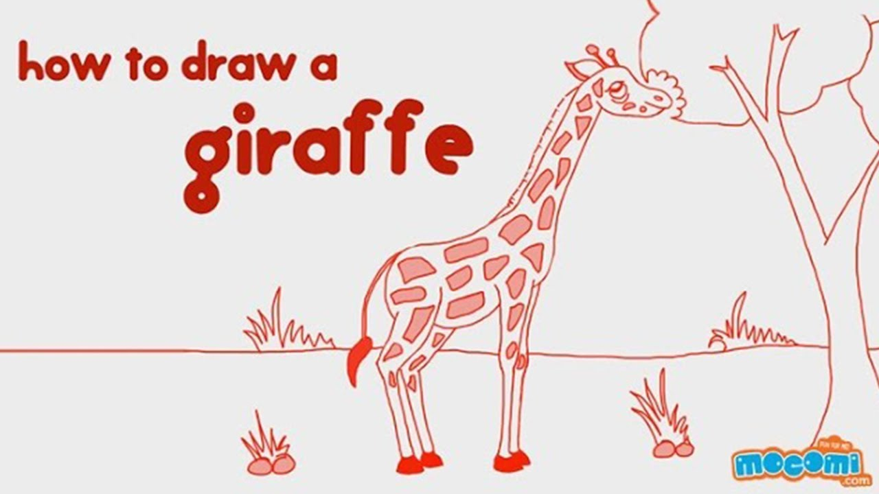 1280x720 How To Draw A Giraffe