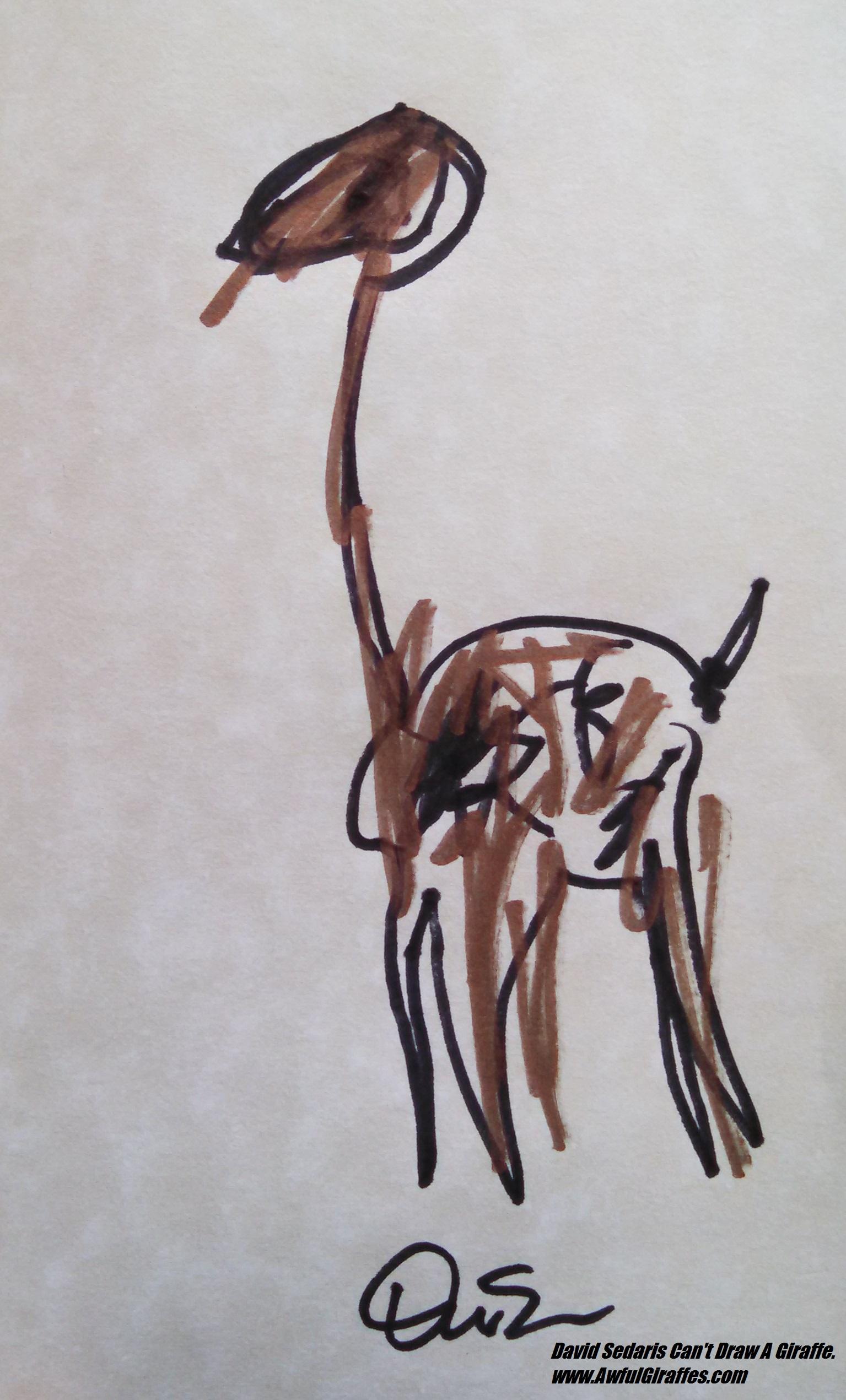 1535x2541 Drawing A Giraffe Is The Least Bizarre Thing David Sedaris' Done