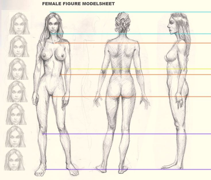 735x626 Gallery Drawing Female Figures,