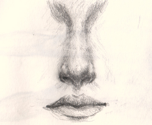 500x410 How To Draw A Nose