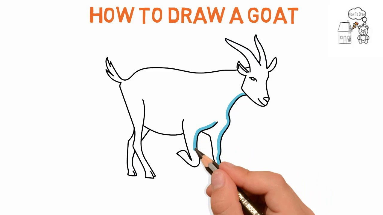 1280x720 Goat How To Draw A Goat Easy Sketch Drawing Video Demo Latest