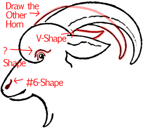 500x448 How To Draw A Goat Face With Easy Step By Step Drawing Tutorial