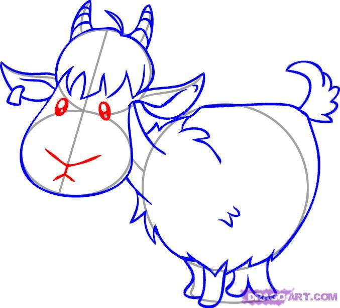 677x612 How To Draw A Cartoon Goat Step 5 Drawing Goats