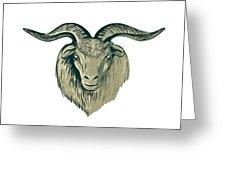 226x170 Cashmere Goat Head Drawing Digital Art By Aloysius Patrimonio