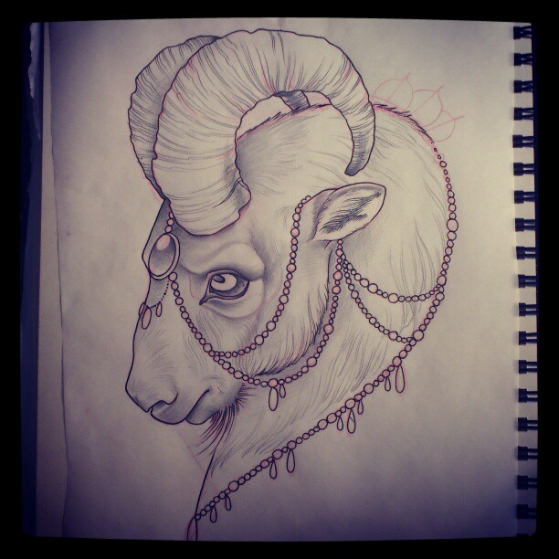 612x612 Outline Goat Head Tattoo Drawing Design