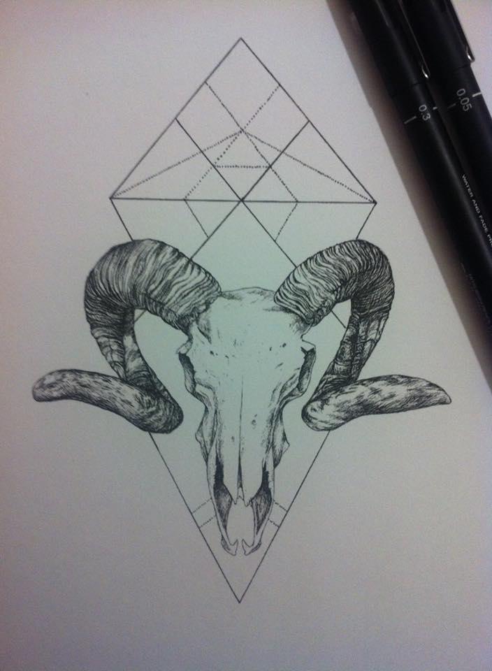 704x960 Ram Skull Pen Drawing By Kate Wonderland99 On DeviantArt