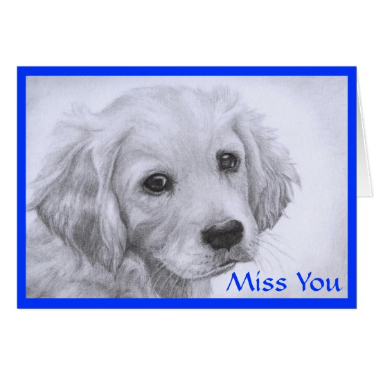 540x540 Miss You Golden Retriever Puppy Drawing Card