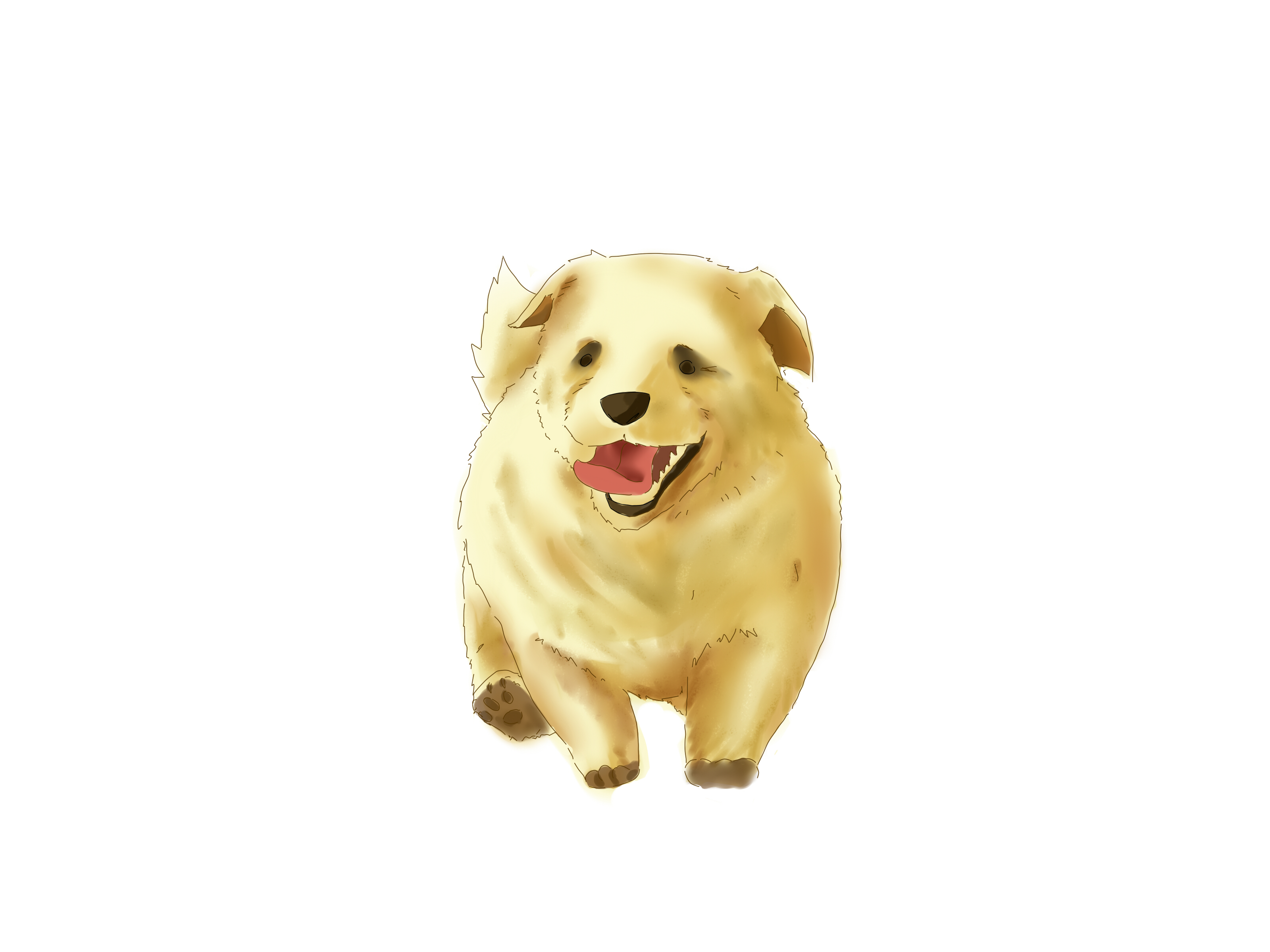 3200x2400 4 Ways To Draw A Puppy