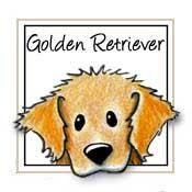 175x175 Golden Retriever My Pets Dog, Drawings And Doodles