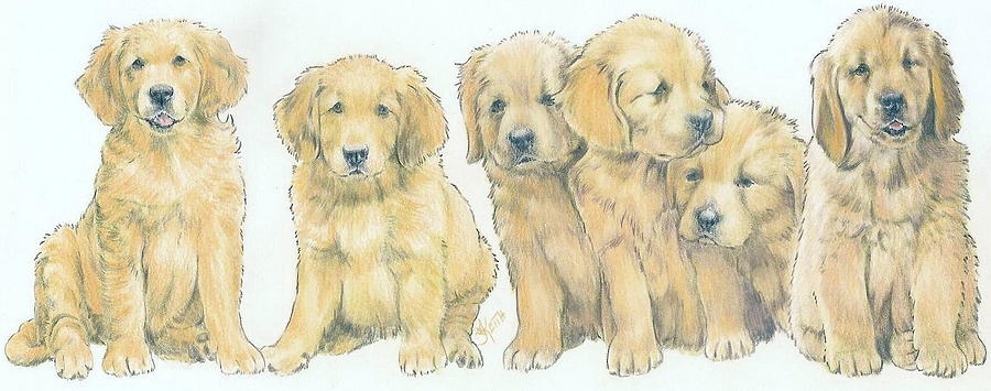 900x355 Golden Retriever Puppies Mixed Media By Barbara Keith