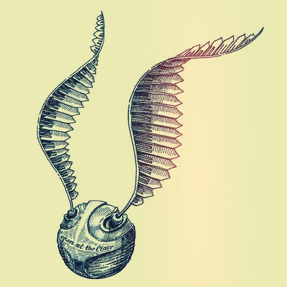 568x568 Golden Snitch On Behance