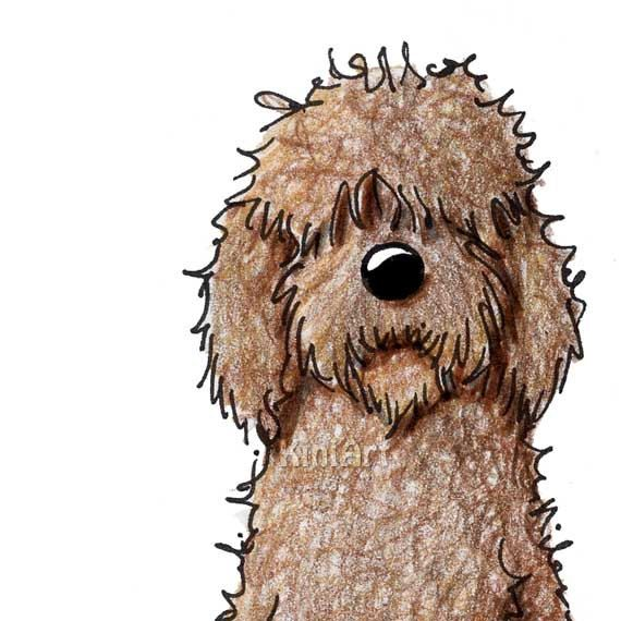 570x570 Labradoodle Dog Aceo Original Art Chocolate Goldendoodle