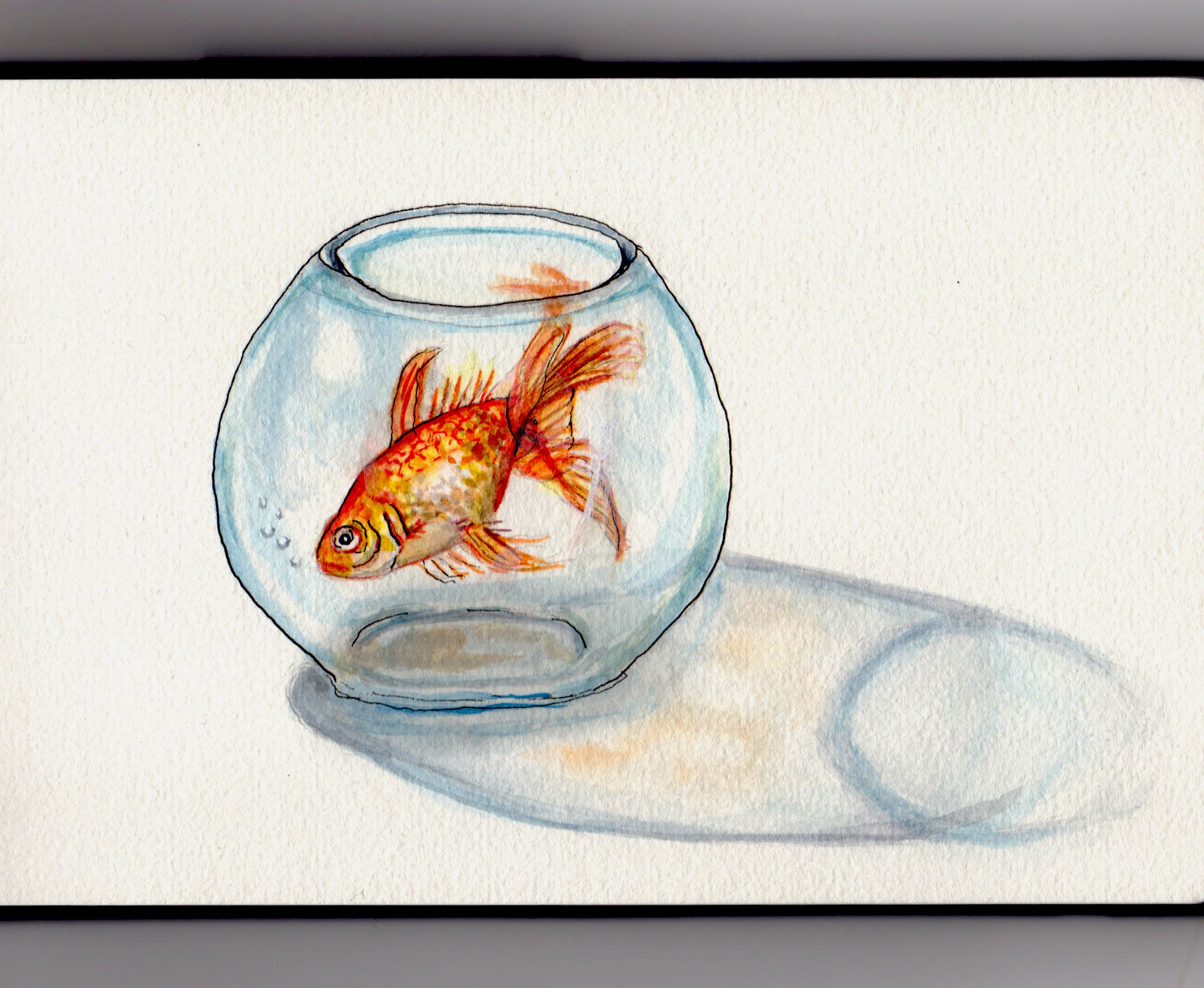 2176x1785 ~ Fish In A Bowl
