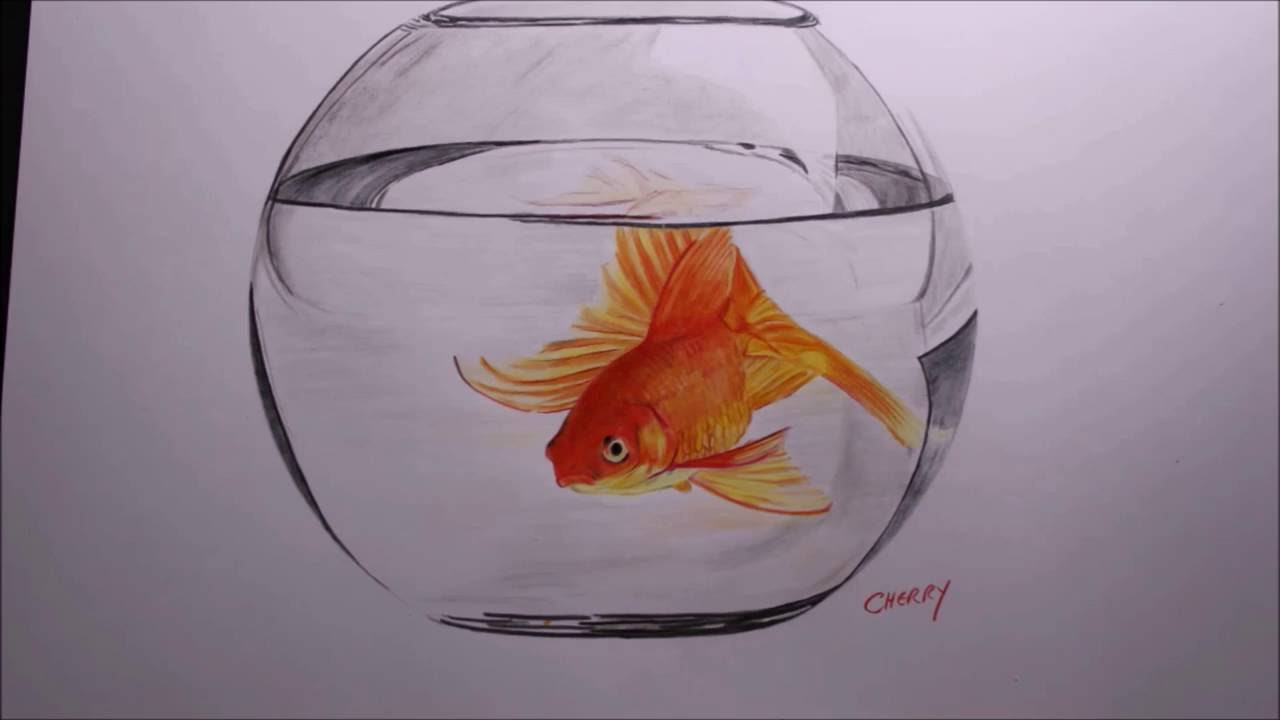 1280x720 Goldfish In A Bowl Pencil Drawing Time Lapse
