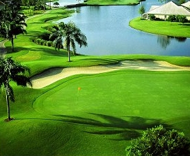 277x227 The Golf And Country Clubs Of Tampa Bay